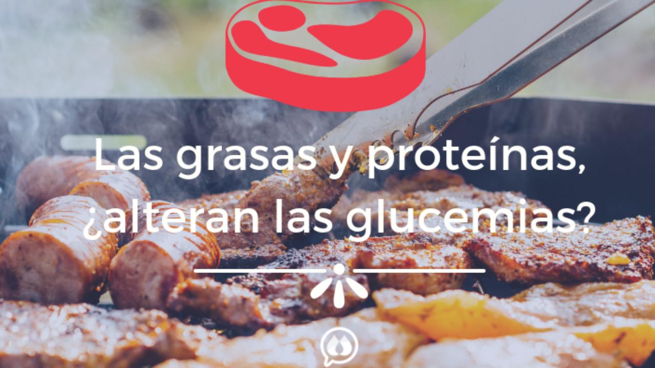 Carbohidratos Proteínas Y Grasas Su Efecto En La Glucosa